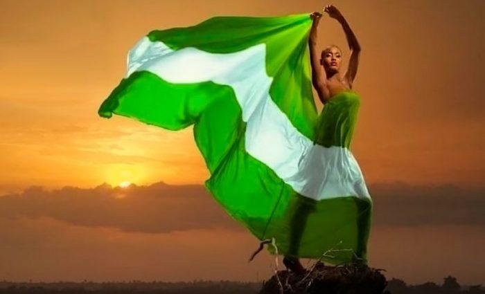 nigerian-flag-by-vtpass-825x510